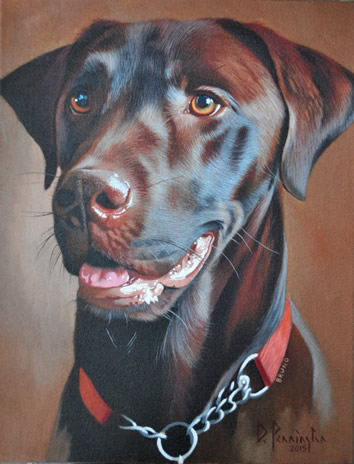 Bruno Chocolate Labrador oil painting by David Pennington